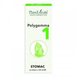 POLYGEMMA 1 - STOMAC PlantExtrakt