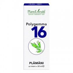 POLYGEMMA 16 - PLAMANI PlantExtrakt
